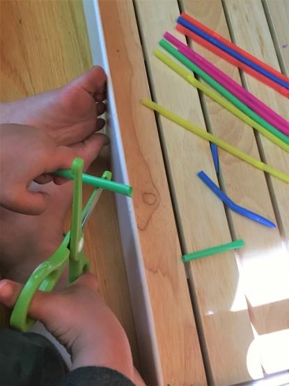 straw blog 5
